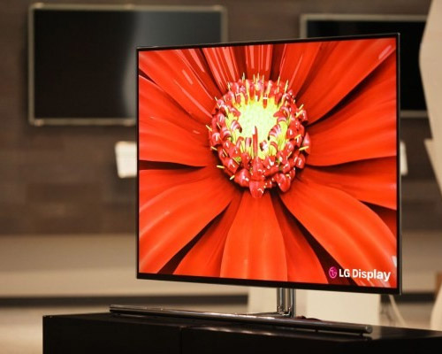 LG 55-inch OLED TV Panel