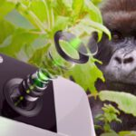 Corning Gorilla Glass DX/DX+